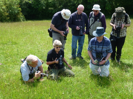 photographers in a field